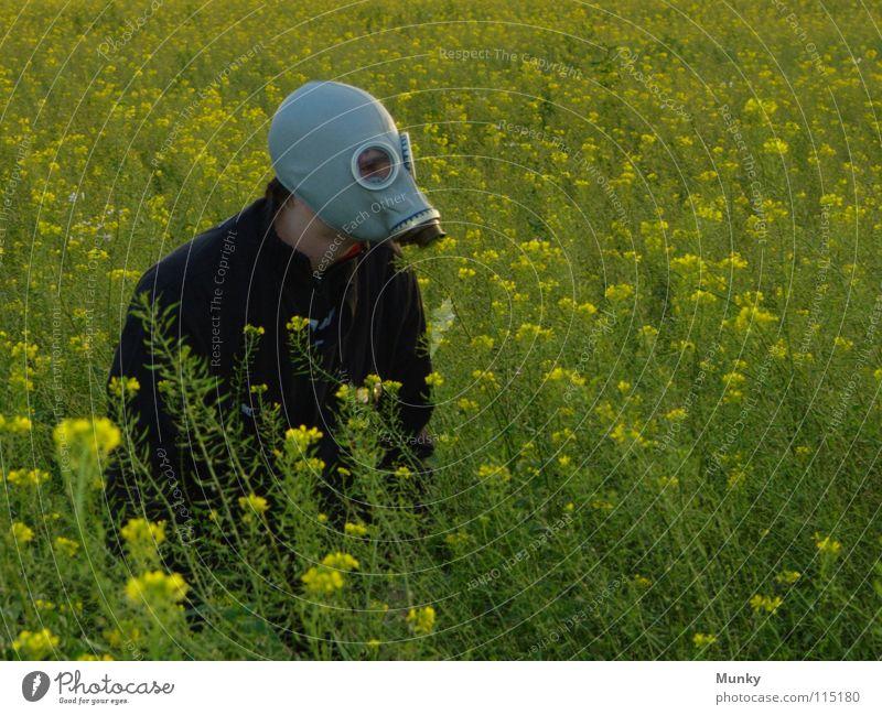 Mist! Fehlalarm... Hand grün Pflanze Blume Freude schwarz Ferne Landschaft gelb Herbst Spielen grau Blüte lustig Horizont Glas