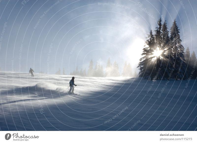 gefühlte -20 Grad Himmel Natur Ferien & Urlaub & Reisen blau weiß Sonne Baum Einsamkeit Winter kalt Berge u. Gebirge Schnee Hintergrundbild Deutschland Horizont Wetter