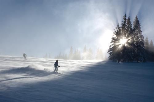 gefühlte -20 Grad Himmel Natur Ferien & Urlaub & Reisen blau weiß Sonne Baum Einsamkeit Winter kalt Berge u. Gebirge Schnee Hintergrundbild Deutschland Horizont