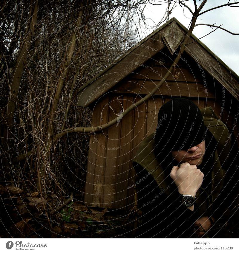 schlafende hunde soll man nicht wecken! Mensch Natur Freude Tier Haus Wärme Holz Kopf Deutschland Arme frei Nase Sicherheit Dach Fell