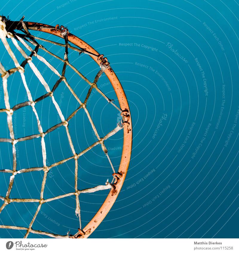 Basketball Korb Basketballkorb Ballsport Sommer Herbst Sonnenlicht Froschperspektive Sport Luft Befestigung Spielen Treffer Freude Erfolg Netz Betätigung Himmel