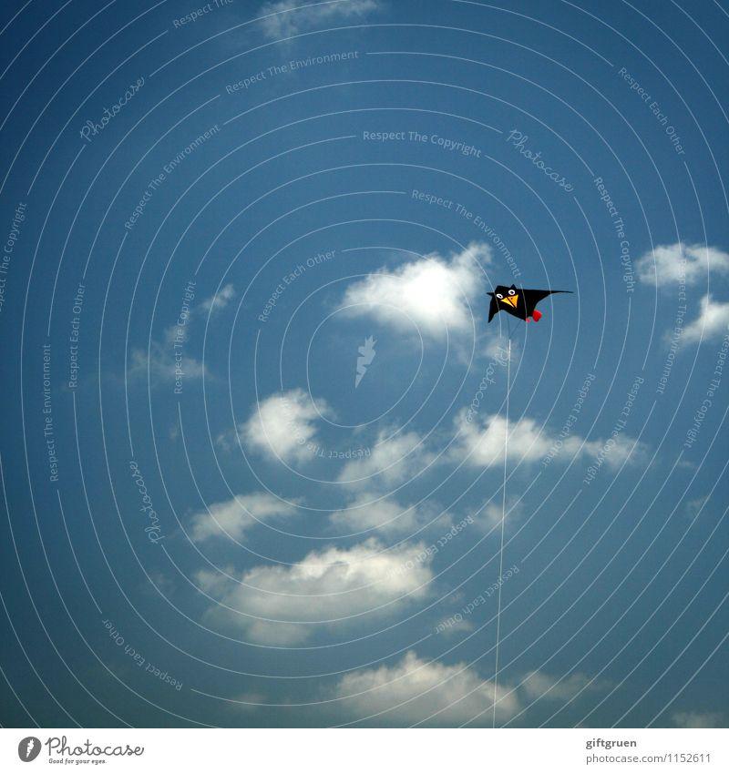 überflieger Luft Himmel Wolken Sonne Schönes Wetter Wind fliegen hängen Unendlichkeit blau schwarz Freude Fröhlichkeit Lebensfreude Kindheit Drache Lenkdrachen