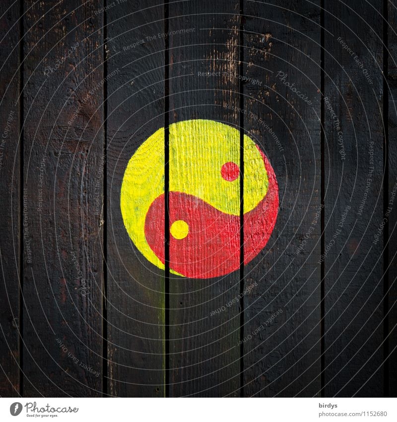 Yin + Yang rot schwarz gelb Wand Mauer Religion & Glaube Design authentisch ästhetisch Kreis einfach Zeichen rund Zusammenhalt positiv altehrwürdig
