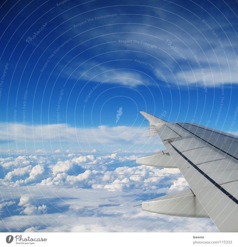 hoch hinaus Wolken Ferne Flugzeug weiß Portugal Überflug Luft Luftverkehr Himmel Niveau oben frei Freiheit Flügel blau oben drüber Ferien & Urlaub & Reisen