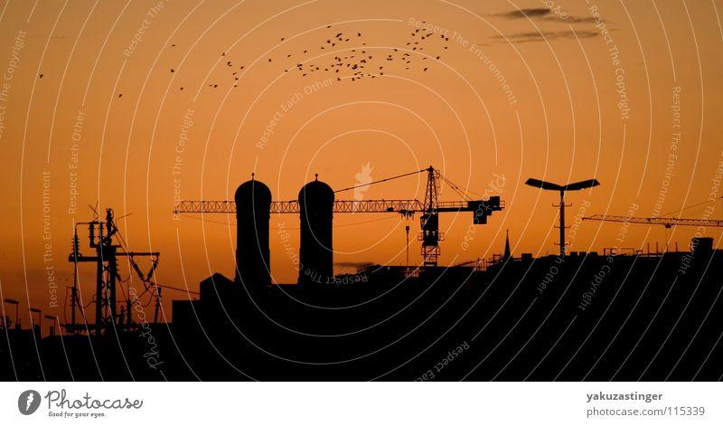 Geschwader im Vorbeiflung Sonnenaufgang Zugvogel Silhouette rot Morgen Kran Baustelle Oberleitung Laterne Wolken München Silouette orange Morgendämmerung