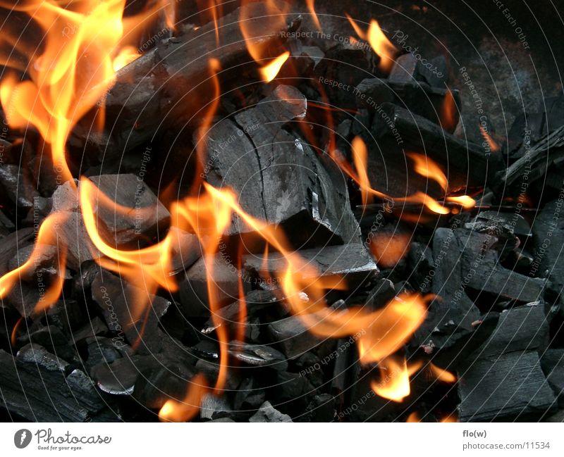 on fire Holzkohle Grill heiß Dinge Brand Feuer