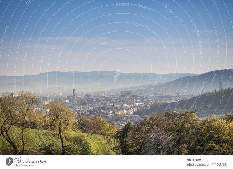 Freiburg im Frühling Ferien & Urlaub & Reisen Ausflug Städtereise Sommer Sonne Berge u. Gebirge Umwelt Natur Landschaft Pflanze Himmel Klima Wetter Wärme Baum