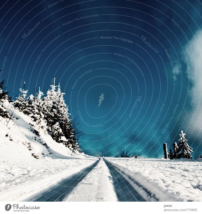 Ab ins Blaue … Himmel blau weiß Winter Wolken Wald Landschaft Straße kalt Schnee Wege & Pfade Eis Spuren Gleise Tanne Verkehrswege