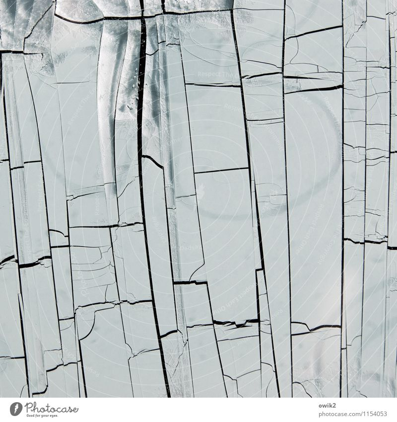 Nach der Dürre Kunstwerk Kunststoff alt dehydrieren Vergänglichkeit verlieren Zerstörung Riss Linie netzartig fremdartig kaputt Schaden Zahn der Zeit