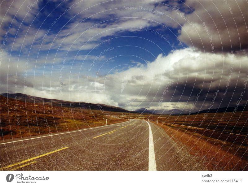 Gewitter von rechts Himmel Natur Ferien & Urlaub & Reisen Pflanze Sommer Landschaft Wolken Ferne Straße oben Horizont Geschwindigkeit Klima Schönes Wetter