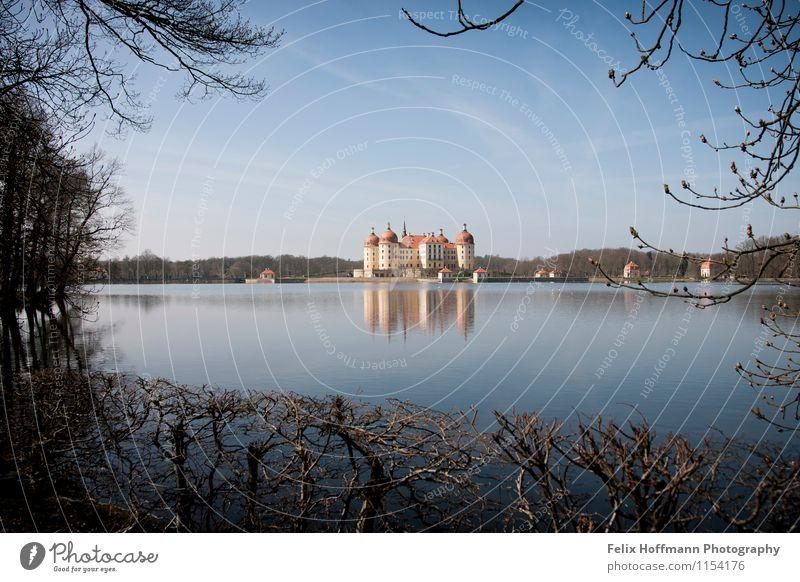 Im Rahmen der Bäume Kunst Museum Sonne Frühling Schönes Wetter Moritzburg Burg oder Schloss Turm Architektur Sehenswürdigkeit beobachten entdecken Erholung