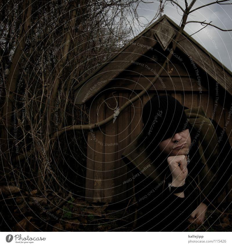 cave canem Mensch Natur Freude Tier Haus Wärme Holz Kopf Deutschland Arme frei Nase schlafen Sicherheit Dach Fell