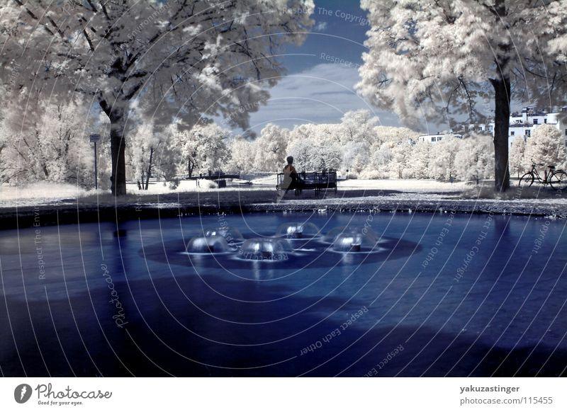 Feel Flows Infrarotaufnahme Farbinfrarot weiß Brunnen Baum Horizont Blatt Wiese Gras Sträucher Langzeitbelichtung blau Wasser Himmel Channelshifting