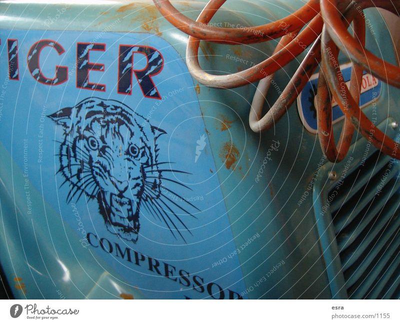 tiger Traktor Tiger Motor Kompressor obskur Kabel alt Nahaufnahme blau