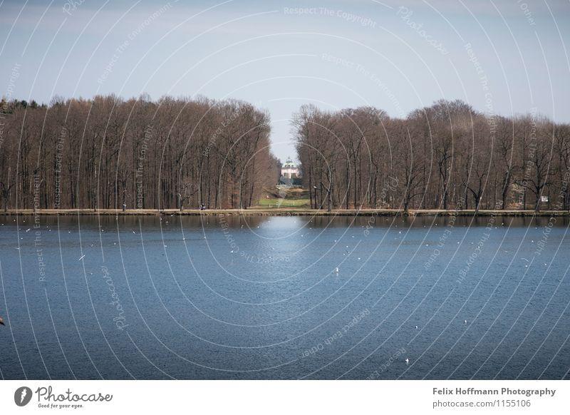 Blick aufs Fasanenschlösschen elegant Traumhaus Garten Architektur Kultur Natur Landschaft Wasser Frühling Park Wellen Seeufer Moritzburg Deutschland Europa