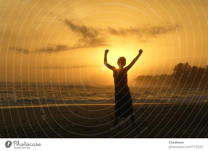 Sonnenverdecker Himmel Wasser Ferien & Urlaub & Reisen Meer Freude Strand Wolken Freiheit Sand Küste hell Wellen Tanzen Arme Palme