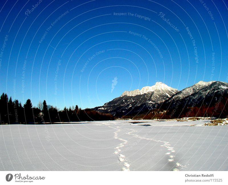 Winter Spuren Schneespur Spaziergang Schneelandschaft Tiefschnee Pulverschnee Wintersport weiß Berge u. Gebirge Landschaft Fluss Himmel blau