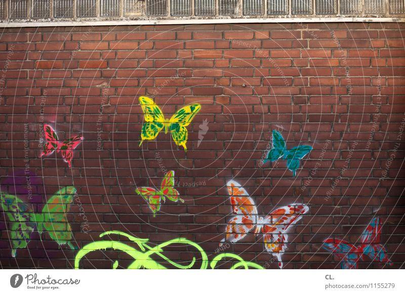 schmetterlinge fangen Farbe Haus Tier Wand Graffiti Mauer Stein Fröhlichkeit Kreativität Lebensfreude Tiergruppe einzigartig Unendlichkeit Verliebtheit Schmetterling Inspiration