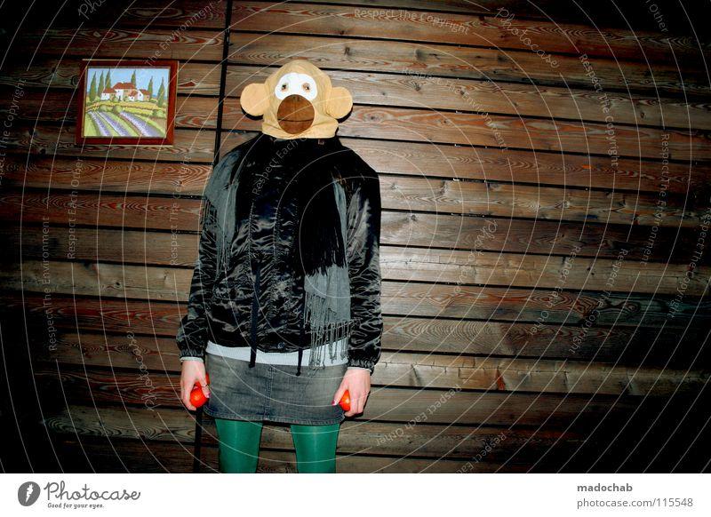 three THE INTRODUCTION Frau Mensch Hand schön Freude Tier Einsamkeit Haus Ferne feminin kalt Wand Holz Gebäude Traurigkeit lustig