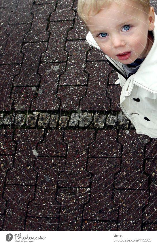 ?? Kind Kleinkind Junge Kindheit Auge Ohr Nase 1 Mensch 1-3 Jahre Wege & Pfade Jacke blond Denken Kommunizieren Wachsamkeit Stirn Gedanke Pflastersteine