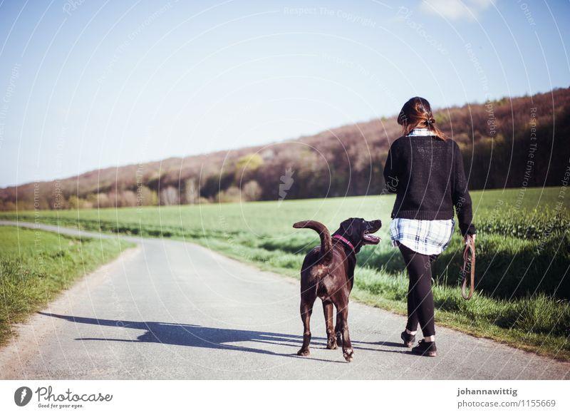 immer wenn wir uns wiederseh'n. Hund Ferien & Urlaub & Reisen Jugendliche grün ruhig Tier Wald Erwachsene Umwelt Leben Liebe Bewegung feminin Wege & Pfade Horizont Zufriedenheit