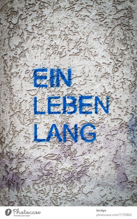 Buchcover Biographie Lifestyle Mauer Wand Putzfassade Schriftzeichen außergewöhnlich blau grau Lebensfreude Erfolg Akzeptanz Menschlichkeit Rechtschaffenheit