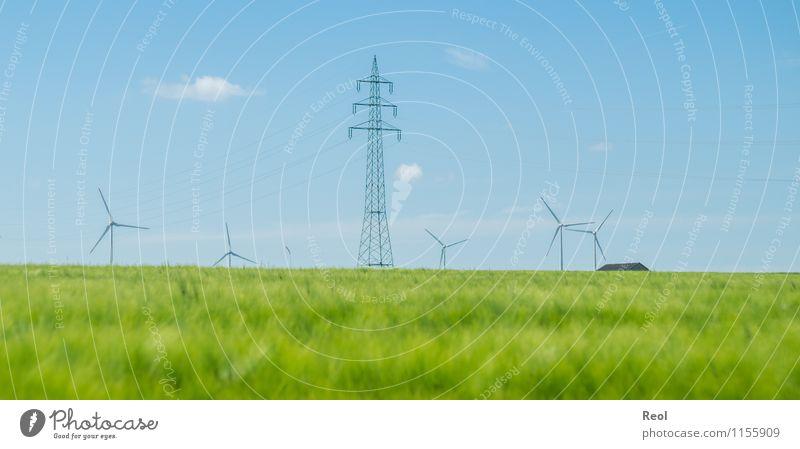 Stromerzeugung Technik & Technologie Energiewirtschaft Erneuerbare Energie Windkraftanlage Umwelt Natur Landschaft Himmel Frühling Gerste Gerstenfeld Feld