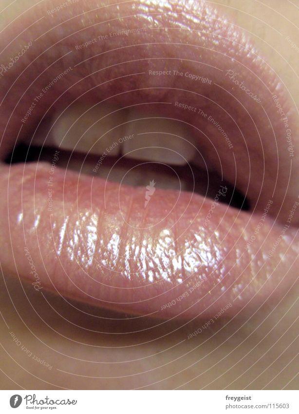 Ready to kiss... weich Zähne Lippen Küssen Alkoholisiert