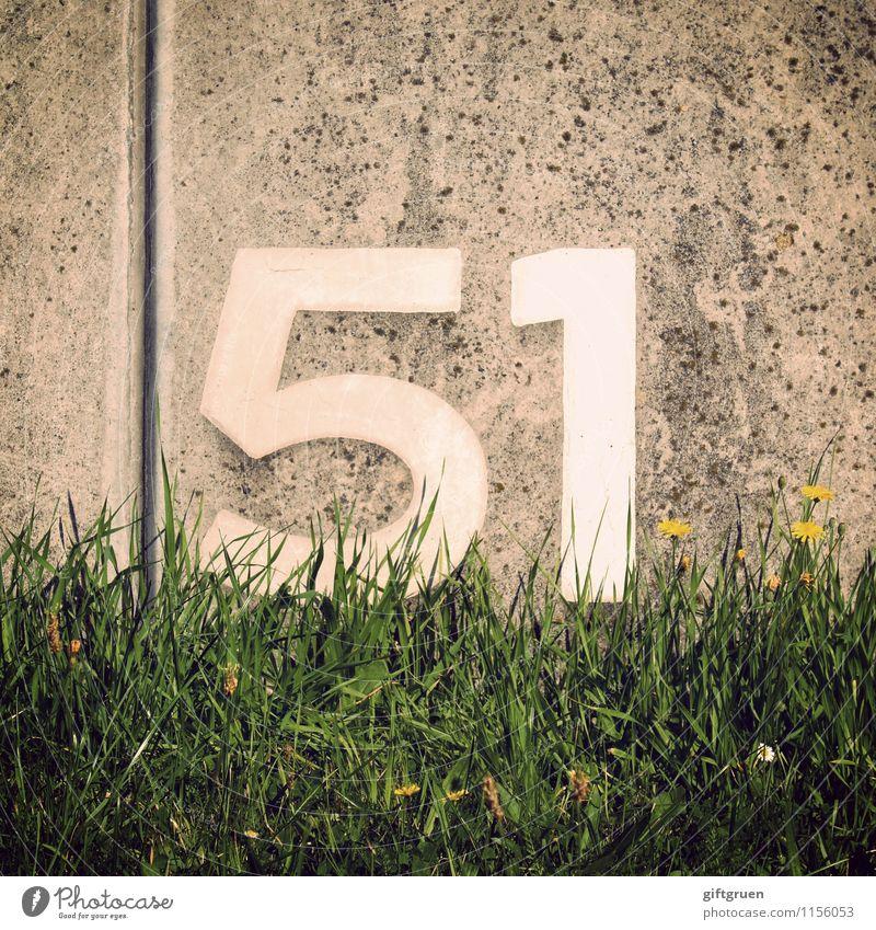 antimon Zeichen Schriftzeichen Ziffern & Zahlen Hinweisschild Warnschild Blühend schreiben 51 einundfünfzig Beton Betonwand Wand Mauer Furche Spalte Wiese