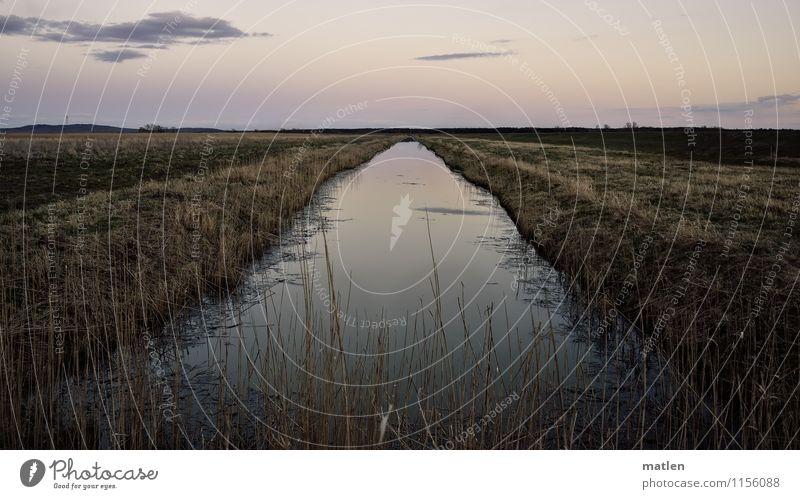 Tangente Umwelt Natur Landschaft Pflanze Wasser Himmel Wolken Horizont Sonnenaufgang Sonnenuntergang Frühling Wetter Schönes Wetter Gras Wiese Hügel Küste blau