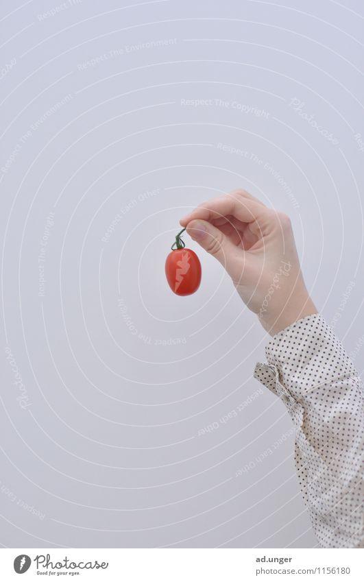 Kein Apfel (2) Gesunde Ernährung Gesundheit Essen Lebensmittel Feld Lebensfreude einzigartig Gemüse gut Ernte Bioprodukte selbstgemacht Erntedankfest