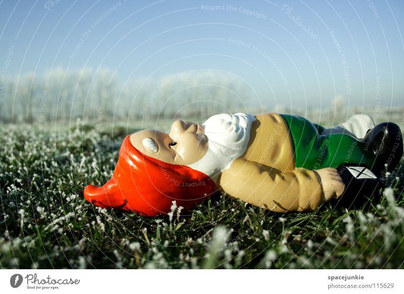 Sonnenbaden Wiese Gras gefroren frieren weiß Raureif Außenaufnahme Winter Dezember kalt Weihnachten & Advent Zwerg Gartenzwerge skurril Spießer Dorf Heimat