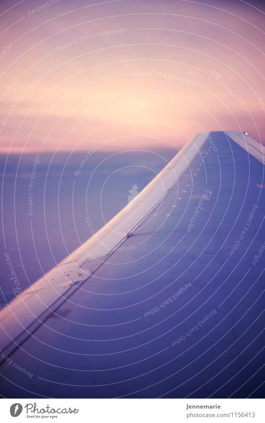 Fly Himmel blau Sommer Landschaft ruhig Wolken Freude Ferne Leben Glück Freiheit fliegen rosa Zufriedenheit Freizeit & Hobby Tourismus