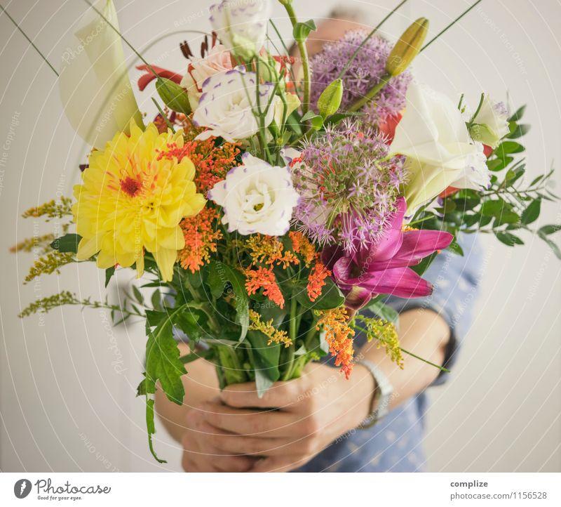 Kavalier Lifestyle schön Feste & Feiern Valentinstag Muttertag Hochzeit Mann Erwachsene Pflanze Blume Sträucher Rose Tulpe Blatt Blüte Grünpflanze exotisch