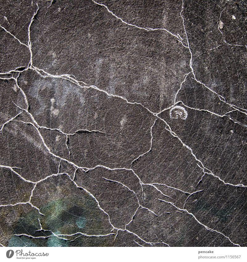 schatzkarte Natur dunkel Wege & Pfade Fassade einzigartig Zeichen Urelemente geheimnisvoll Ziel Platzangst Suche Landkarte Blattadern finden Versteck Schneckenhaus
