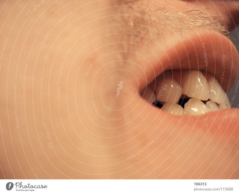 FEHLVERHALTEN maskulin Mund verrückt Reinigen Zähne Wut Schmerz Konflikt & Streit Aggression Zahnarzt Intimität beißen Einblick Kiefer Karies dental