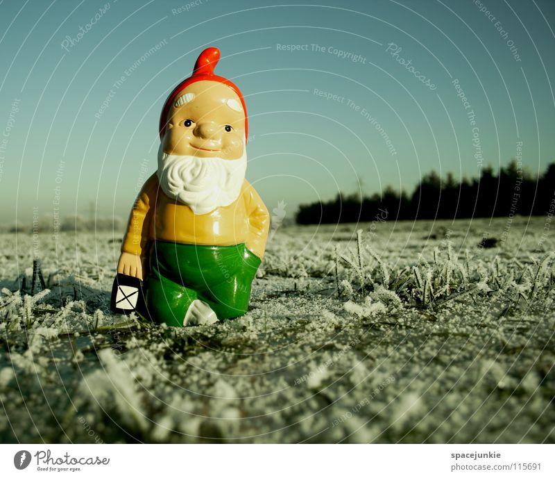 Looking for christmas (2) Wiese Gras gefroren frieren weiß Raureif Außenaufnahme Winter Dezember kalt Weihnachten & Advent Zwerg Gartenzwerge skurril Spießer