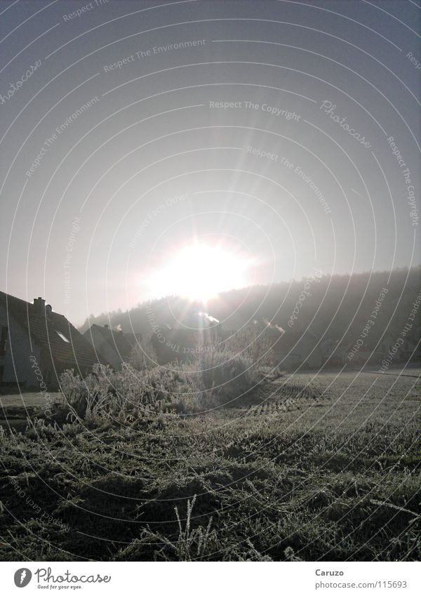 Morgensonne5 Sonne Winter Haus Straße Lampe kalt Wege & Pfade hell Frost Klarheit blenden Himmelskörper & Weltall Steigung