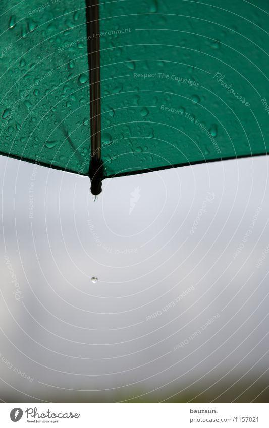 victoria falls. Natur Ferien & Urlaub & Reisen Sommer Wasser Landschaft Umwelt Traurigkeit Stimmung Regen Wetter Tourismus Wassertropfen Klima Ausflug