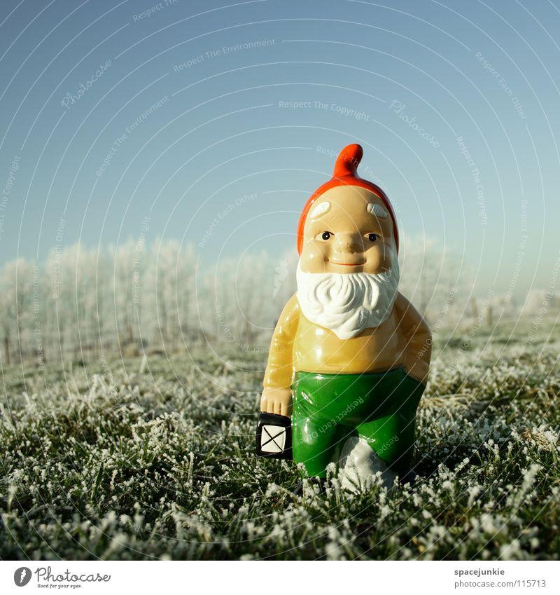 Looking for christmas (3) Wiese Gras gefroren frieren weiß Raureif Außenaufnahme Winter Dezember kalt Zwerg Gartenzwerge skurril Spießer Dorf Heimat