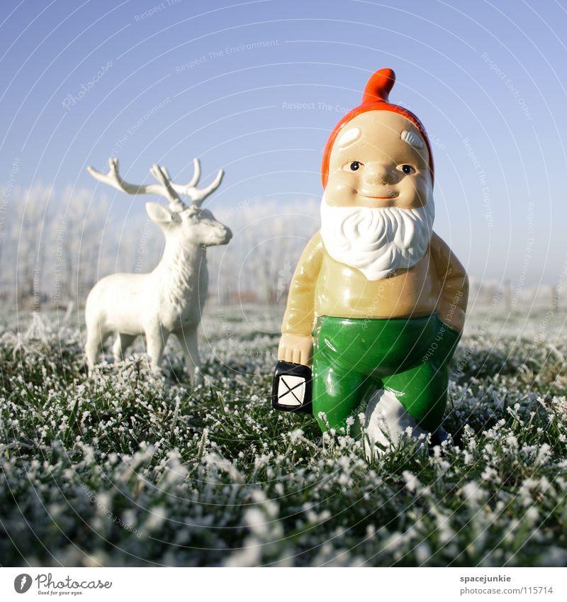 Looking for christmas (4) Wiese Gras gefroren frieren weiß Raureif Außenaufnahme Winter Dezember kalt Weihnachten & Advent Zwerg Gartenzwerge skurril Spießer