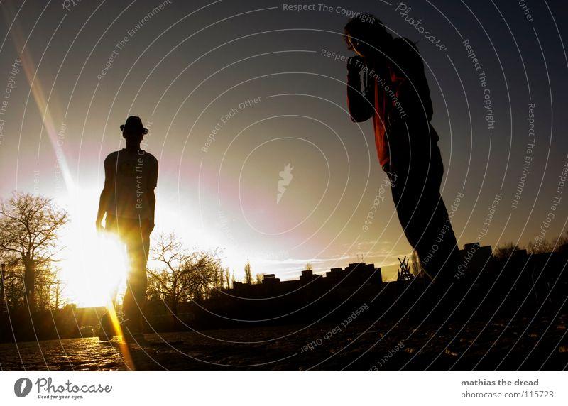 WHAT ARE YOU LOOKING AT? Sonnenuntergang Physik gelb Freundlichkeit maskulin blenden weiß Baum Zaun Froschperspektive Farbverlauf glänzend stehen Verkehrswege