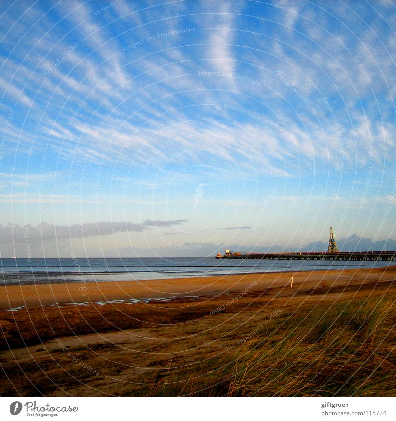 herbstlandschaft V Herbst Herbstlandschaft Küste mehrfarbig Jahreszeiten Strand Meer Wolken Vergänglichkeit Oktober November schlechtes Wetter Himmel Nordsee