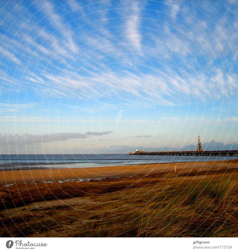 herbstlandschaft V Natur Himmel Sonne Meer Strand Wolken Herbst Sand Landschaft Küste Vergänglichkeit Jahreszeiten Nordsee November Oktober schlechtes Wetter