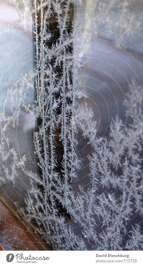 Kalte Zeiten Winter kalt Fenster Holz Eis Linie Glas Tür Frost gefroren frieren Scheibe Rahmen Klimawandel Eisblumen Glasscheibe