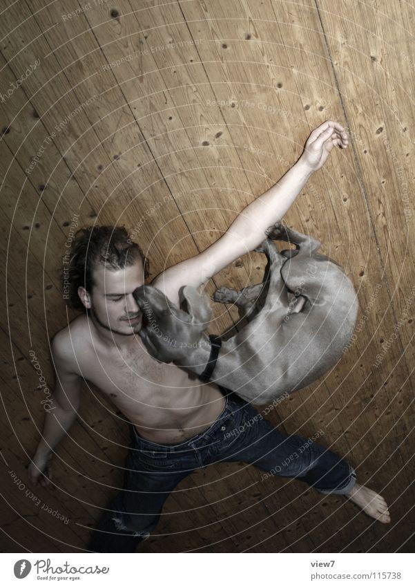 liegen Mensch Mann Jugendliche Gesicht Liebe Holz Hund Freundschaft Körper Zusammensein Arme liegen Bodenbelag Jeanshose Küssen Hose
