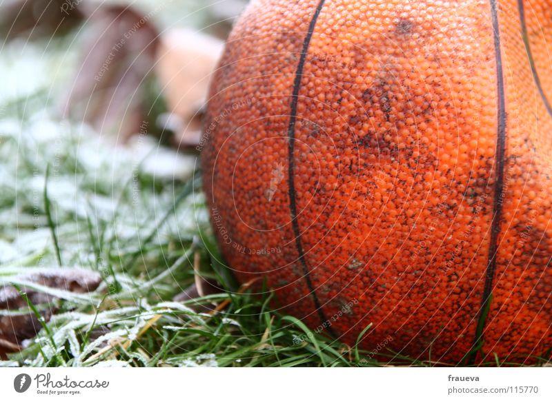 einsamer ball Winter Blatt Einsamkeit Farbe Sport Schnee Spielen Gras Eis Linie Luftverkehr Ball Frost rund kaputt