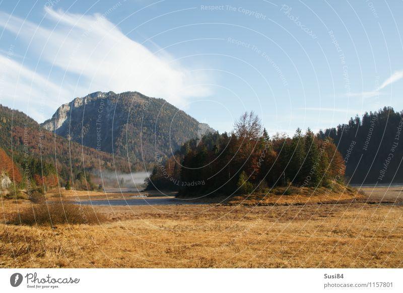 Bergsee Natur Ferien & Urlaub & Reisen Pflanze grün Baum Erholung Einsamkeit Landschaft Wald Gefühle Herbst natürlich Freiheit See braun Idylle