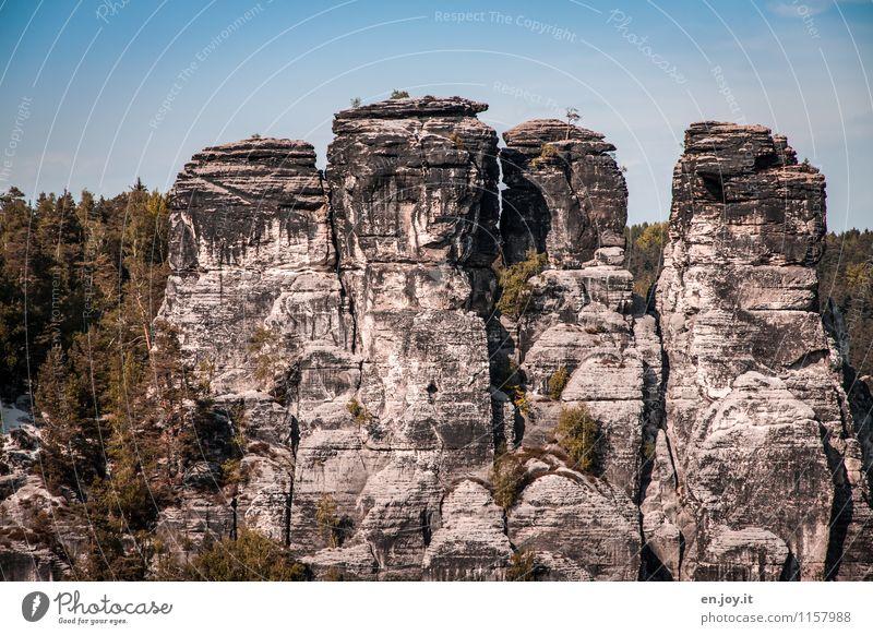 klettern Mensch Himmel Natur Ferien & Urlaub & Reisen Sommer Baum Landschaft Wald Umwelt Herbst Frühling Deutschland Felsen Tourismus Freizeit & Hobby Ausflug