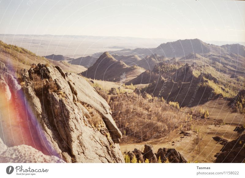 Neuland Landschaft Urelemente Erde Sand Himmel Wolkenloser Himmel Sonne Herbst Baum Park Wald Berge u. Gebirge Neugier Abenteuer Beginn Mongolei Taiga Lärche